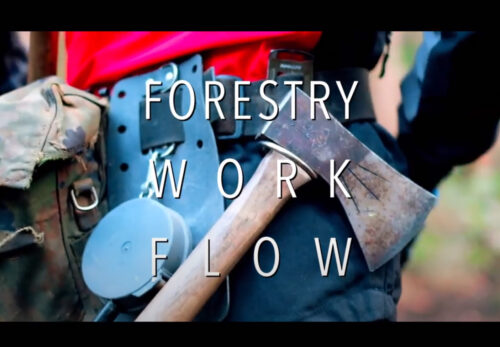 FORESTRY-WORK-FLOW